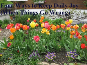 four ways to keep daily joy
