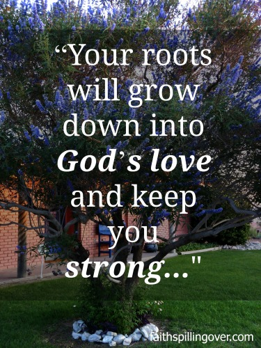 God's love roots deep