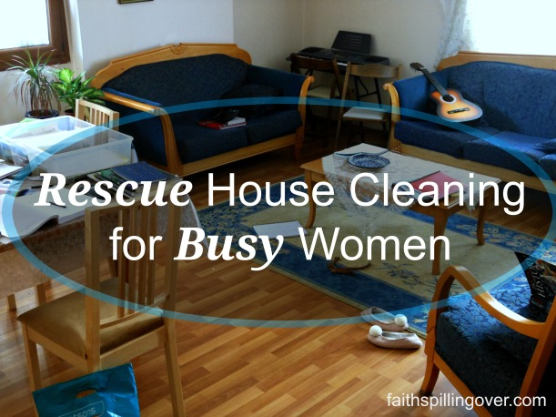 Rescue Housecleaning