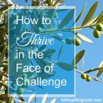 how to thrive in the midst of challenge
