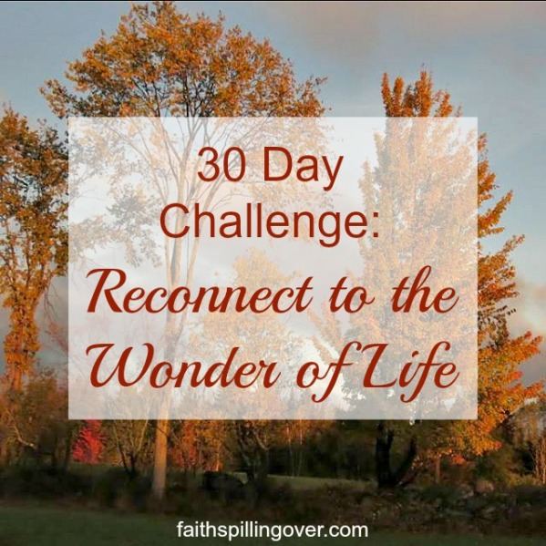 30 day challenge reconnect to the wonder of life