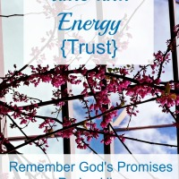 How to Save Time and Energy {Trust}