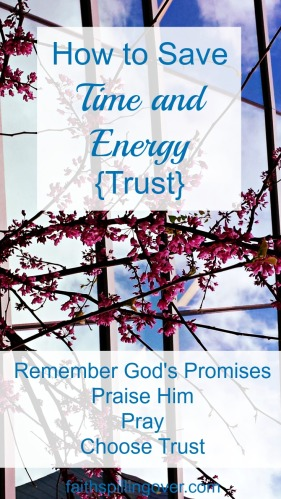 We waste time and spin our wheels when we worry. By making small daily choices to draw near to God with our worries, we can learn to trust. 4 Steps to saving spiritual energy.